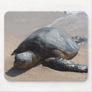 Sea Turtle - Oahu Hawaii Mouse Pad