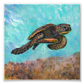 Sea Turtle Painting Photograph