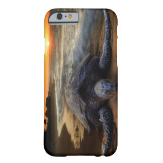 Sea Turtle Sunset Barely There iPhone 6 Case