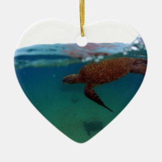 Sea turtle swimming Galapagos Islands Ceramic Ornament