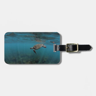 Sea turtle swimming underwater Galapagos Islands Luggage Tag