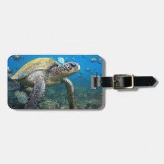 Sea turtle swimming underwater Galapagos paradise Luggage Tag