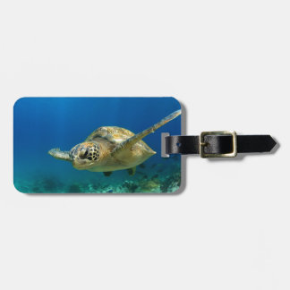 Sea turtle underwater luggage tag