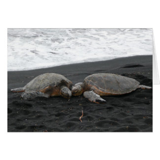 """SEA TURTLES"" blank card"