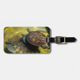 Sea Turtles Luggage Tag
