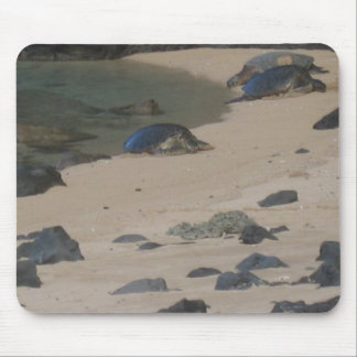 Sea turtles on Kaui's Na Pali coast mousepad