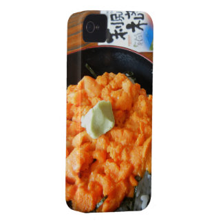 Sea urchin bowl iPhone 4 cover