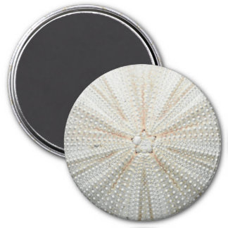 Sea Urchin Fridge Magnet - Round