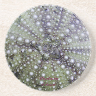 Sea Urchin Seashell Coaster