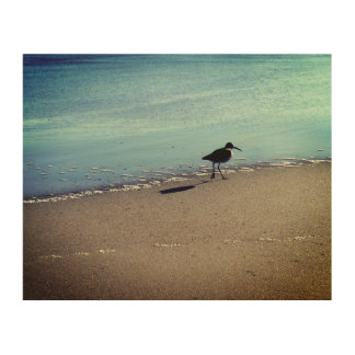 Seabird on the Beach Wood Print