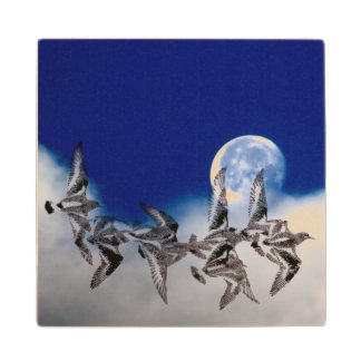 Seabirds Moon Wood Coaster