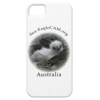 SeaEagle Hatchling i phone case Case For The iPhone 5
