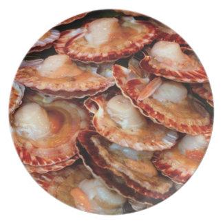 Seafood Dinner Plates
