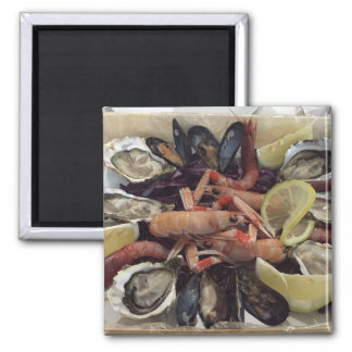 Seafood Square Magnet
