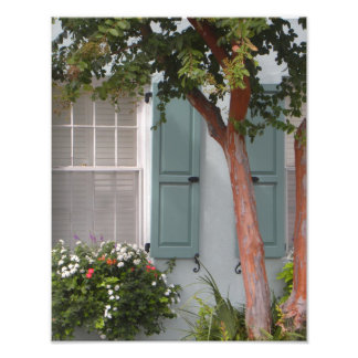 Seagreen shutters photo print