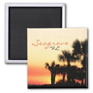 Seagrove Florida palm tree sunset Magnet