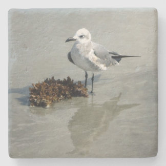 Seagull and Seaweed on Beach Stone Beverage Coaster