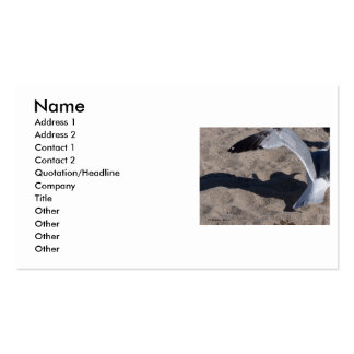 Seagull and shadow Neat effect on sand Business Card Templates