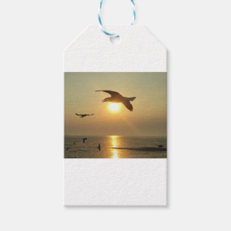 Seagull at Sunset Gift Tags