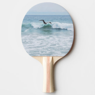 Seagull at the Beach in California Ping Pong Paddle