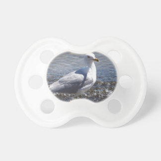 Seagull Baby Pacifier