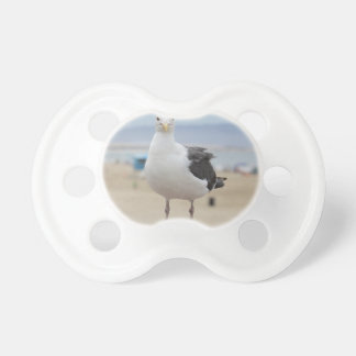 Seagull Baby Pacifiers