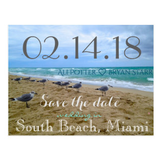 Seagull Beach Save the Date Postcard
