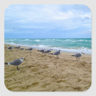 Seagull Beach Stickers