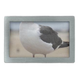 Seagull Belt Buckles