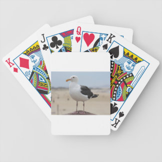 Seagull Bicycle Playing Cards