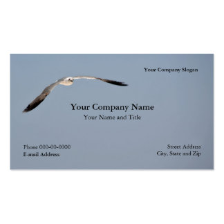 Seagull Business Card