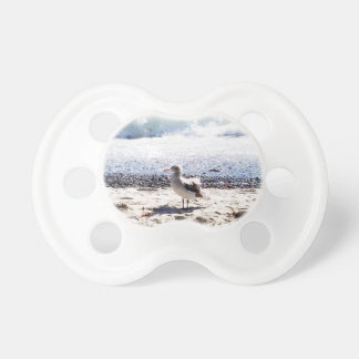 seagull by the ocean on the beach picture baby pacifier