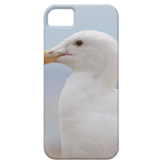 Seagull Case For The iPhone 5