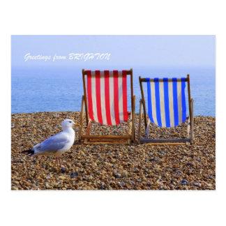 Seagull & Deckchairs Postcard