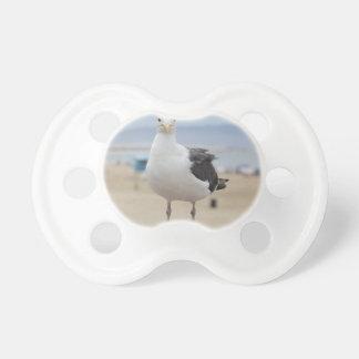 Seagull Dummy