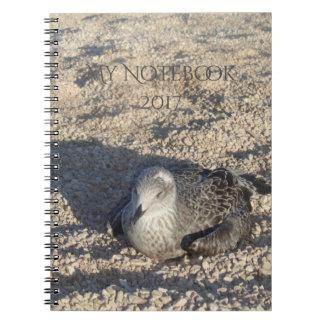 Seagull Enjoying The Sun Summer Photography Notebooks