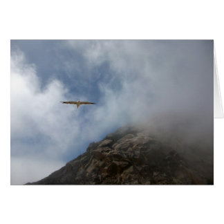 Seagull Flying by Morro Rock Card