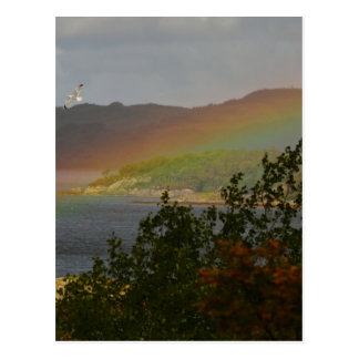 Seagull Flying past a Rainbow in Ardnamurchan Postcard