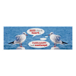 Seagull Home Where Heart Is Familiarity Contempt Posters
