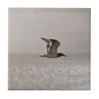 SEAGULL IN FLIGHT, MODERN DESIGN, UNIQUE LOOK SMALL SQUARE TILE