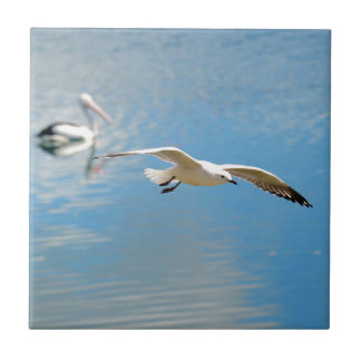 Seagull In Flight - Pelican on Water Small Square Tile