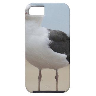 Seagull iPhone 5 Case