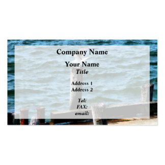 Seagull Landing Pack Of Standard Business Cards