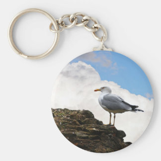 Seagull on a Brick-Wall in Rome Basic Round Button Key Ring