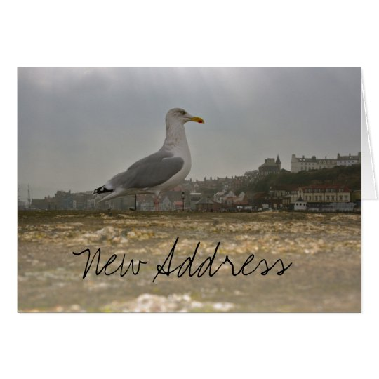 Seagull on a Pier at Whitby, England Note Card