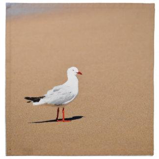 SEAGULL ON BEACH QUEENSLAND AUSTRALIA NAPKIN