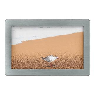 SEAGULL ON BEACH QUEENSLAND AUSTRALIA RECTANGULAR BELT BUCKLE
