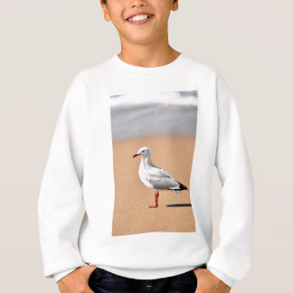 SEAGULL ON BEACH QUEENSLAND AUSTRALIA SWEATSHIRT