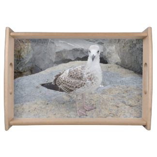 Seagull on Rocks Serving Tray