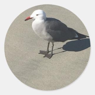 Seagull on Sandy Beach Classic Round Sticker